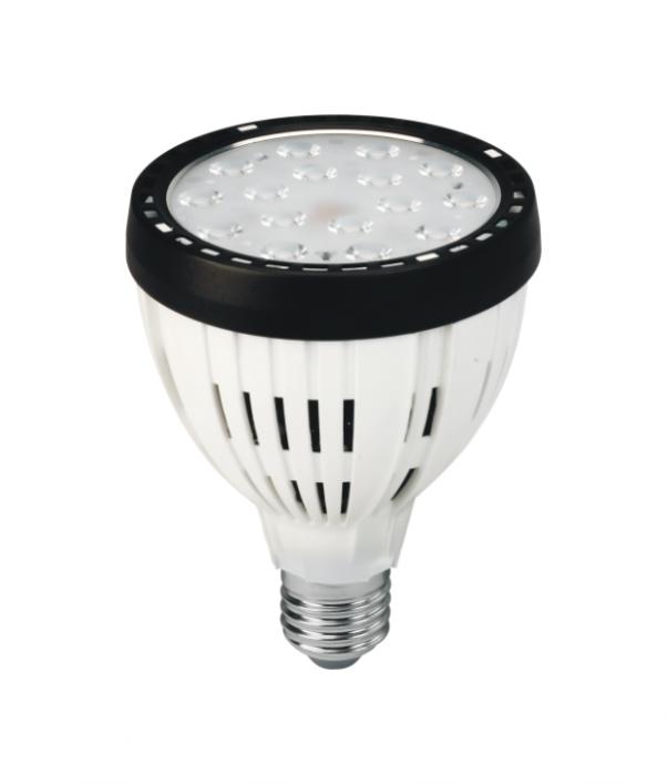 LED PAR30