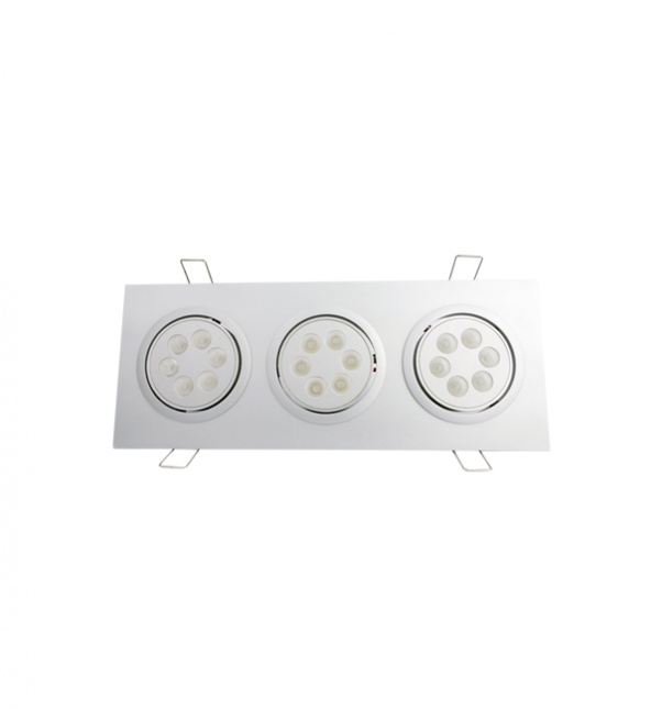 Grid down light factory,  LED Grid down light, Grid down light manufacturer, Down light, Two heads down light